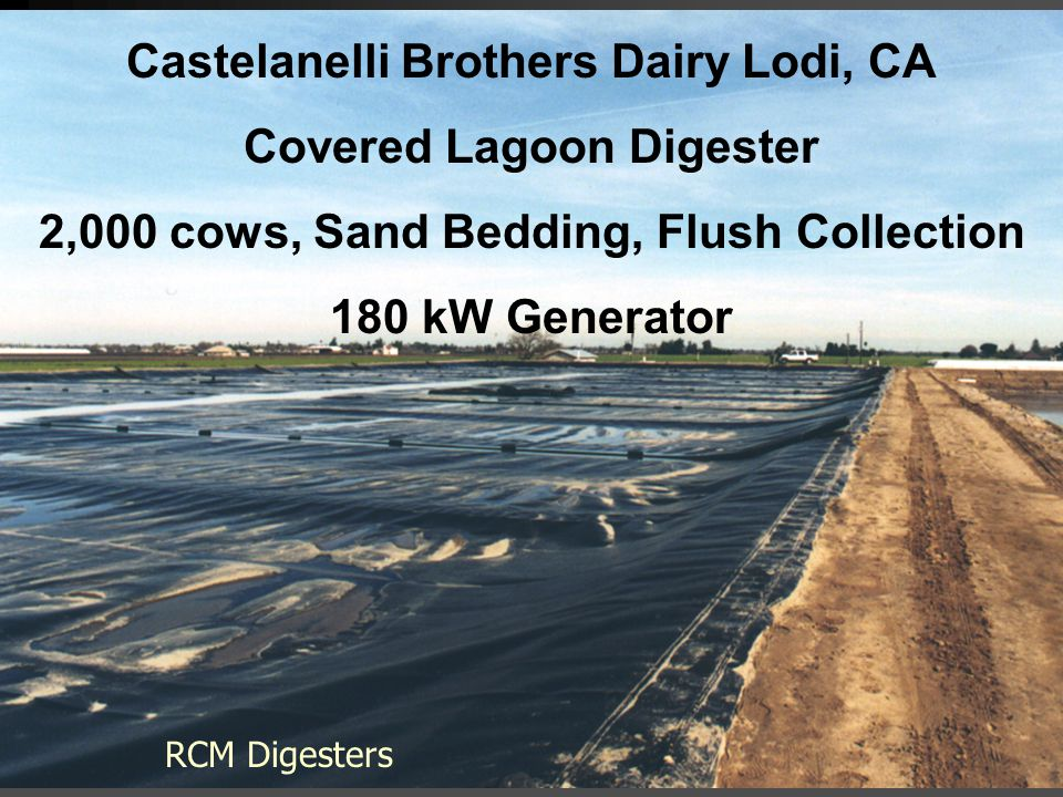 Castelanelli Brothers Dairy Lodi, CA Covered Lagoon Digester 2,000 cows, Sand Bedding, Flush Collection 180 kW Generator RCM Digesters