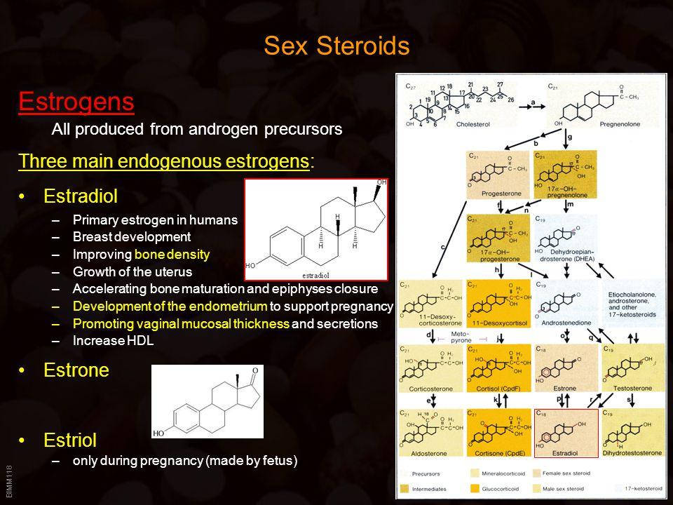 BIMM118 Sex Steroids Estrogens All produced from androgen precursors Three main endogenous estrogens: Estradiol –Primary estrogen in humans –Breast de