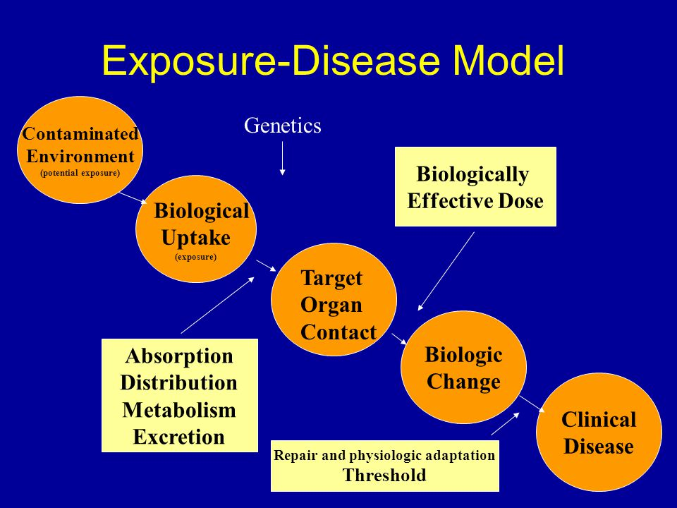 9 Exposure-Disease Model Contaminated Environment (potential exposure) Biological Uptake (exposure) Biologic Change Clinical Disease Target Organ Contact Absorption Distribution Metabolism Excretion Biologically Effective Dose Repair and physiologic adaptation Threshold Genetics