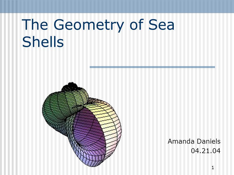 1 The Geometry of Sea Shells Amanda Daniels 04.21.04