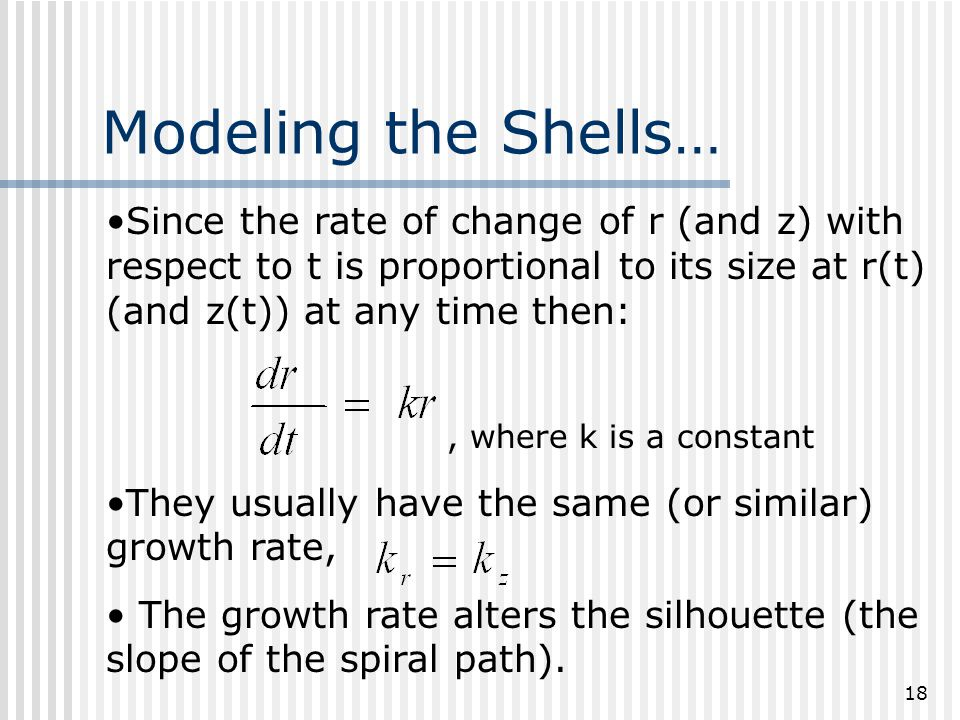 18 Modeling the Shells… Since the rate of change of r (and z) with respect to t is proportional to its size at r(t) (and z(t)) at any time then:, where k is a constant They usually have the same (or similar) growth rate, The growth rate alters the silhouette (the slope of the spiral path).