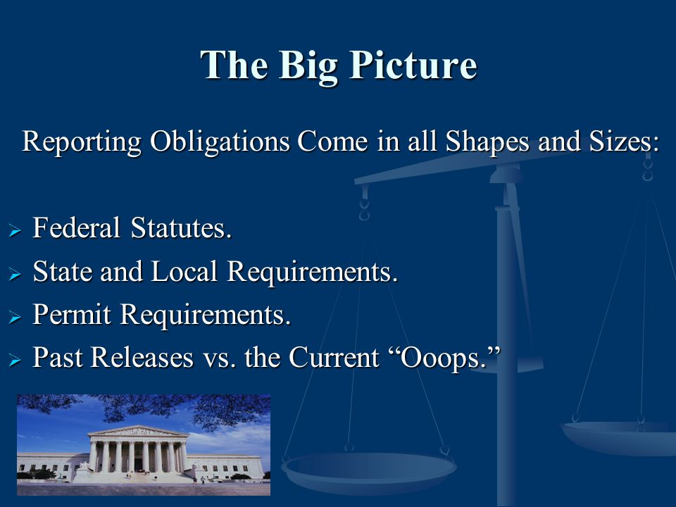 The Big Picture Reporting Obligations Come in all Shapes and Sizes: Reporting Obligations Come in all Shapes and Sizes:  Federal Statutes.