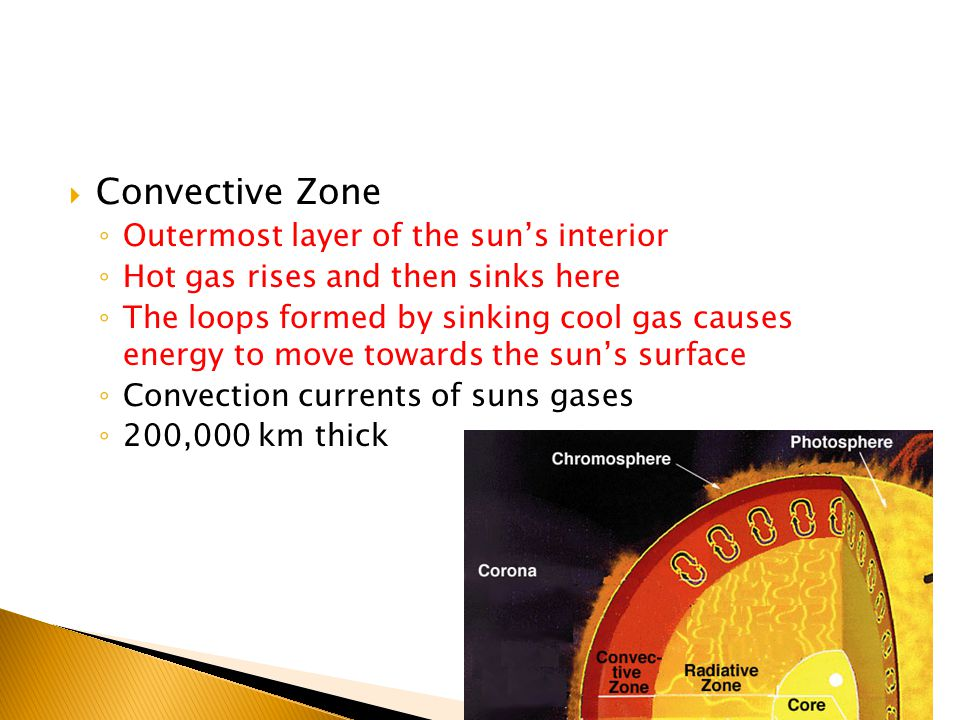  Convective Zone ◦ Outermost layer of the sun's interior ◦ Hot gas rises and then sinks here ◦ The loops formed by sinking cool gas causes energy to move towards the sun's surface ◦ Convection currents of suns gases ◦ 200,000 km thick