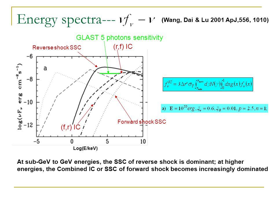 Survival of UHE nuclei – internal shock