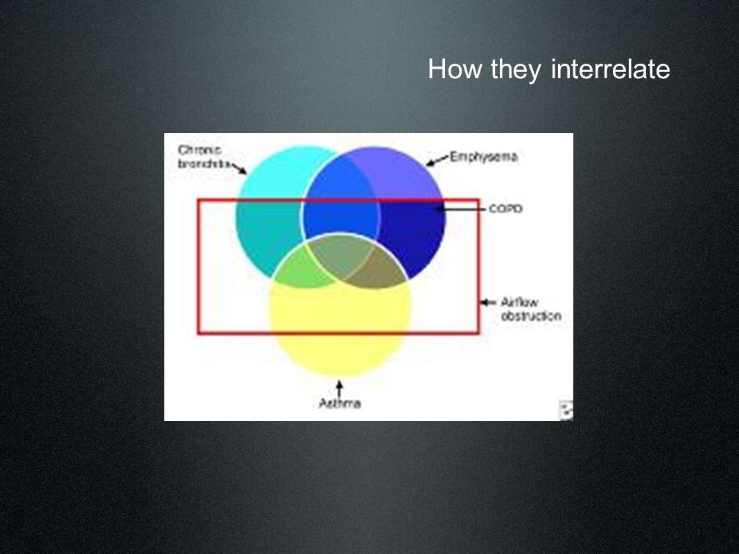 How they interrelate