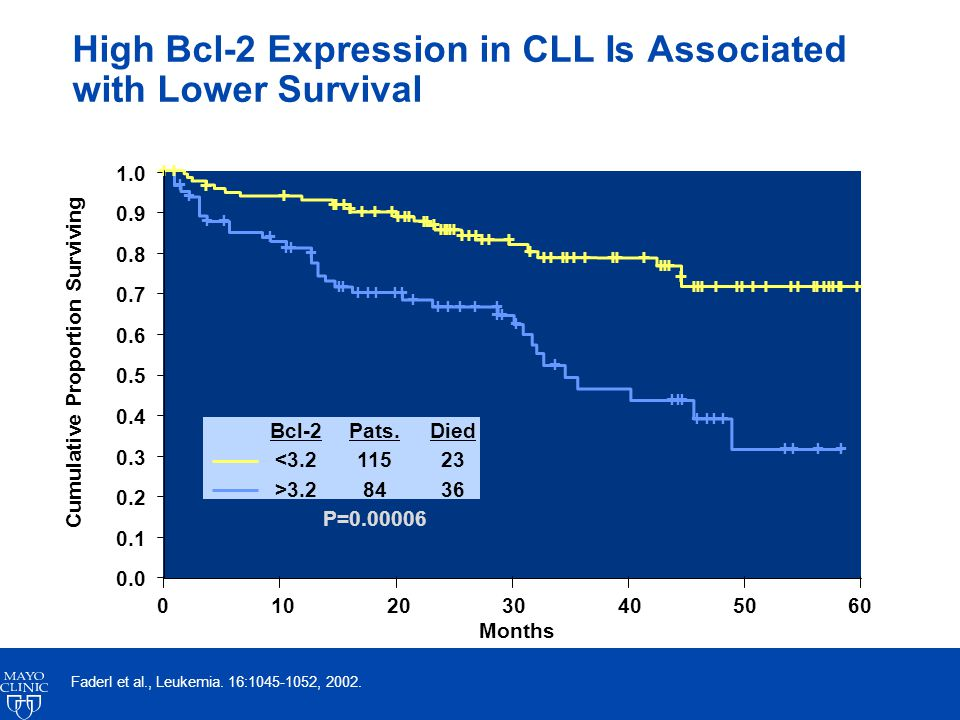 High Bcl-2 Expression in CLL Is Associated with Lower Survival Cumulative Proportion Surviving Months 0102030405060 Faderl et al., Leukemia.