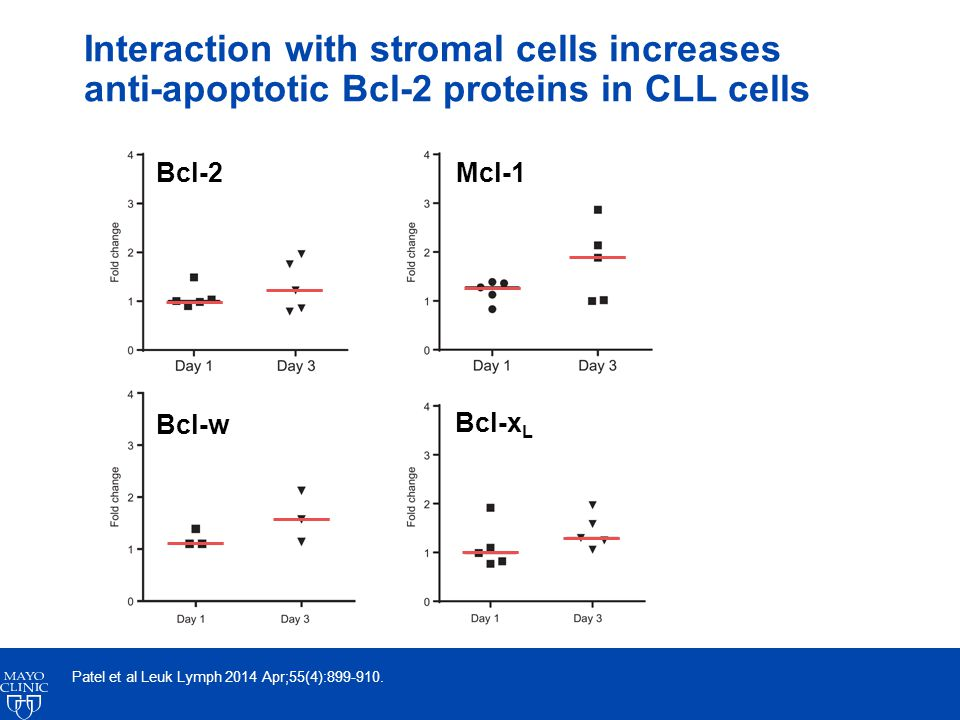 Interaction with stromal cells increases anti-apoptotic Bcl-2 proteins in CLL cells Patel et al Leuk Lymph 2014 Apr;55(4):899-910.