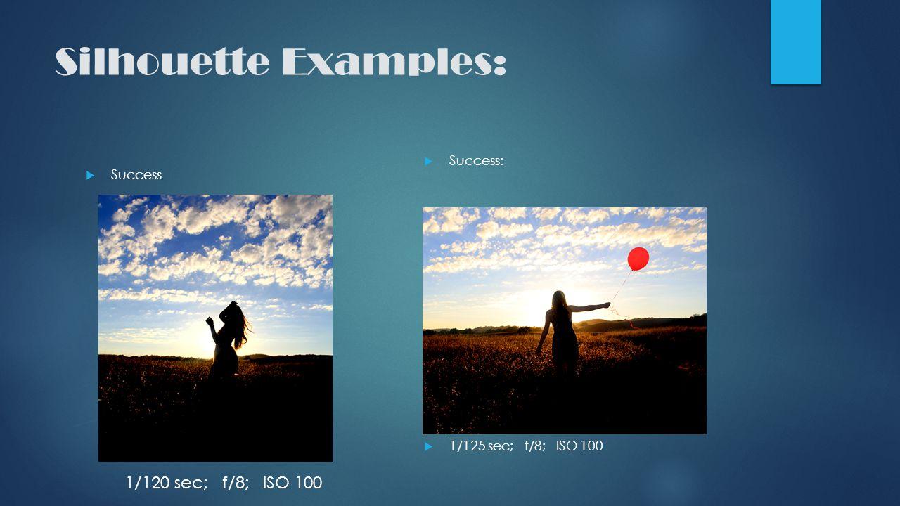 Silhouette Examples:  Success  Success:  1/125 sec; f/8; ISO 100 1/120 sec; f/8; ISO 100