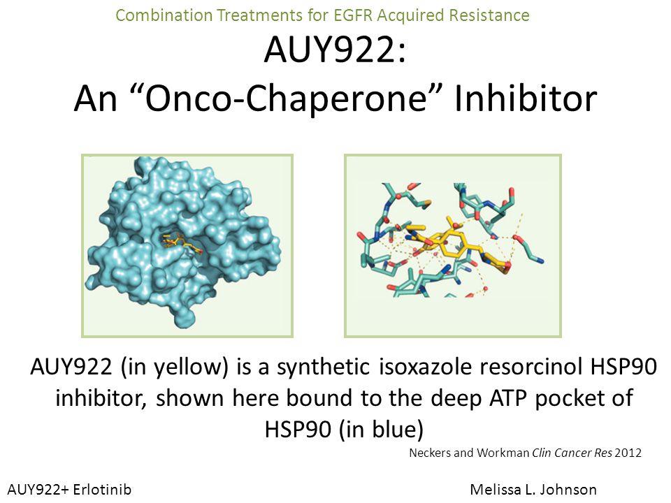Cohort Dose of AUY922 IV weekly Dose of Erlotinib PO daily # pts enrolled 1 25 mg/m 2 75 mg3 2 25 mg/m 2 150 mg3 3 37.5 mg/m 2 150 mg3 4 55 mg/m 2 150 mg3 5 70 mg/m 2 150 mg6 AUY922 + Erlotinib Phase I Dose-Escalation AUY922+ Erlotinib Melissa L.