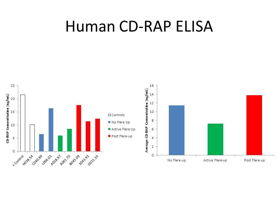 Human CD-RAP ELISA