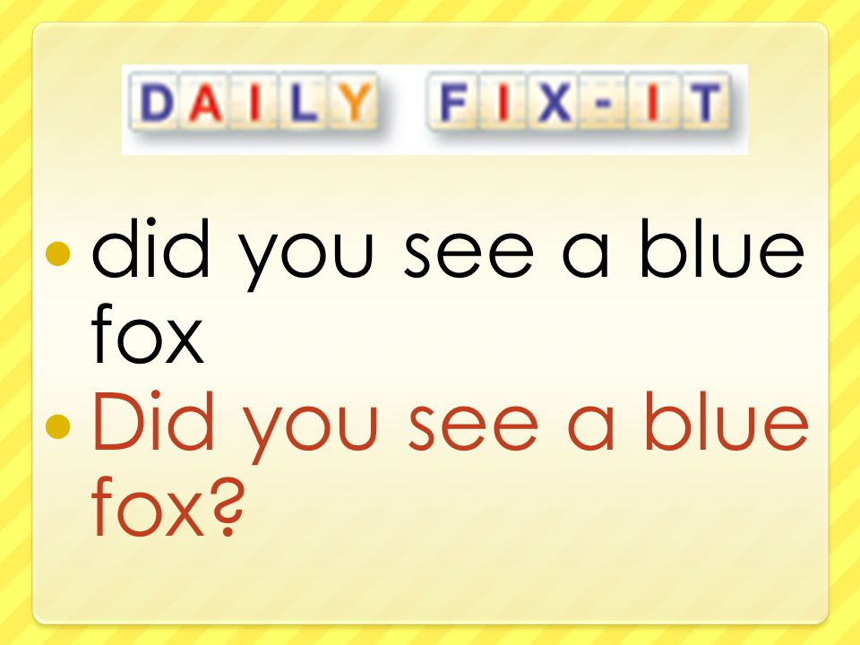 did you see a blue fox Did you see a blue fox