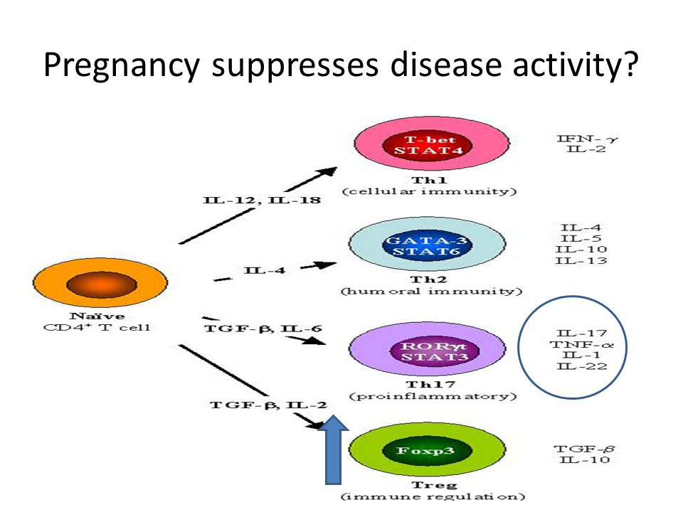 Pregnancy suppresses disease activity?