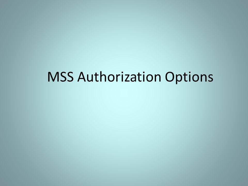 MSS Authorization Options