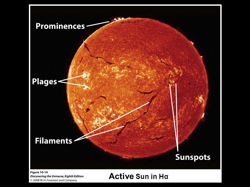 Active Sun in Hα