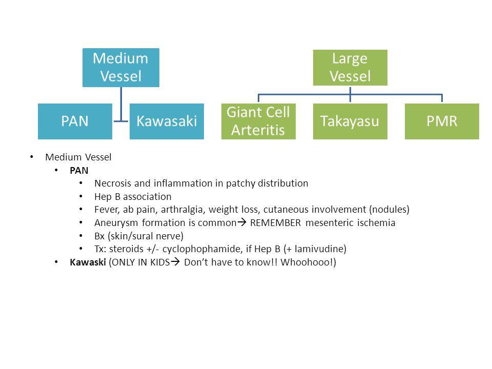 Medium Vessel PANKawasaki Large Vessel Giant Cell Arteritis TakayasuPMR Medium Vessel PAN Necrosis and inflammation in patchy distribution Hep B assoc