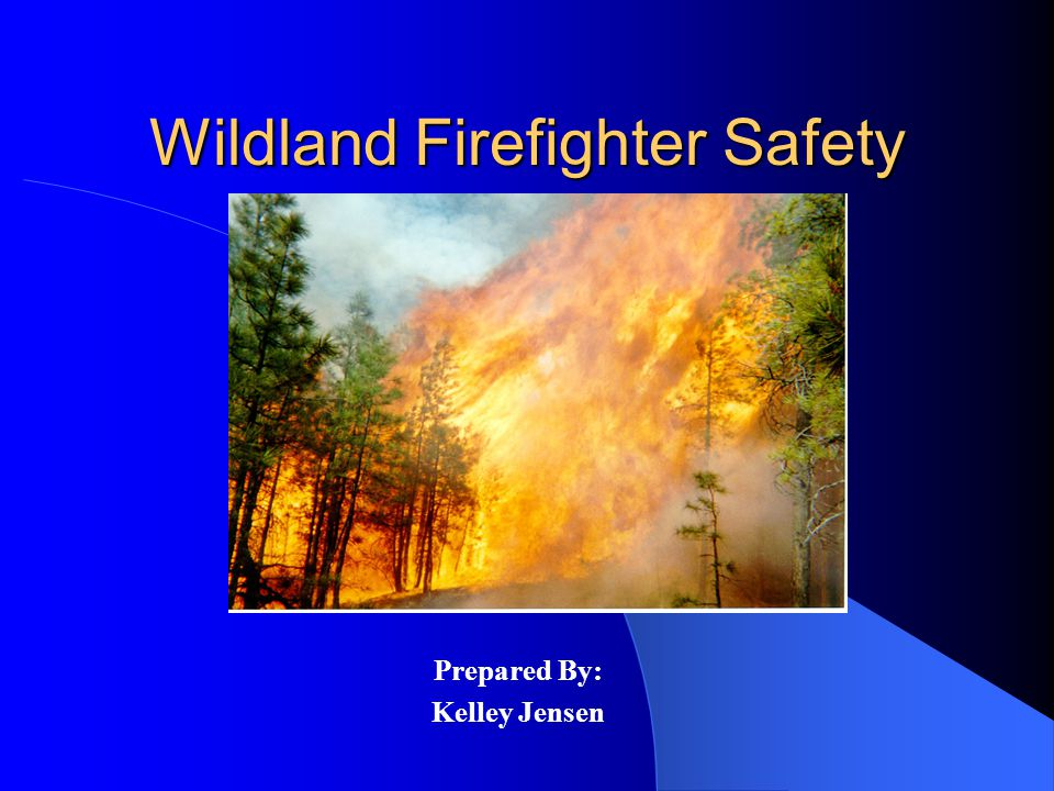 Wildland Firefighter Safety Prepared By: Kelley Jensen