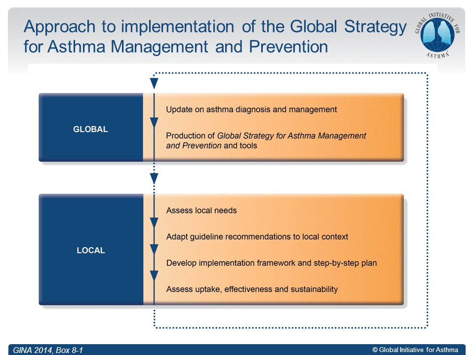 © Global Initiative for Asthma Approach to implementation of the Global Strategy for Asthma Management and Prevention GINA 2014, Box 8-1