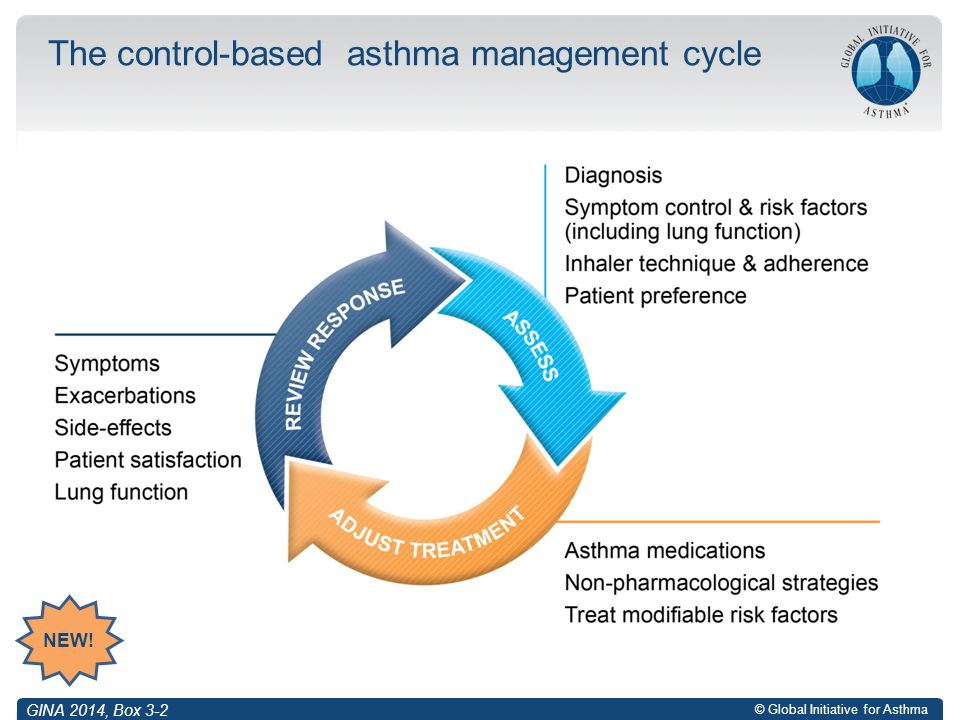 © Global Initiative for Asthma The control-based asthma management cycle GINA 2014, Box 3-2 NEW!