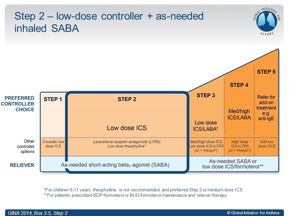 © Global Initiative for Asthma Step 2 – low-dose controller + as-needed inhaled SABA *For children 6-11 years, theophylline is not recommended, and pr