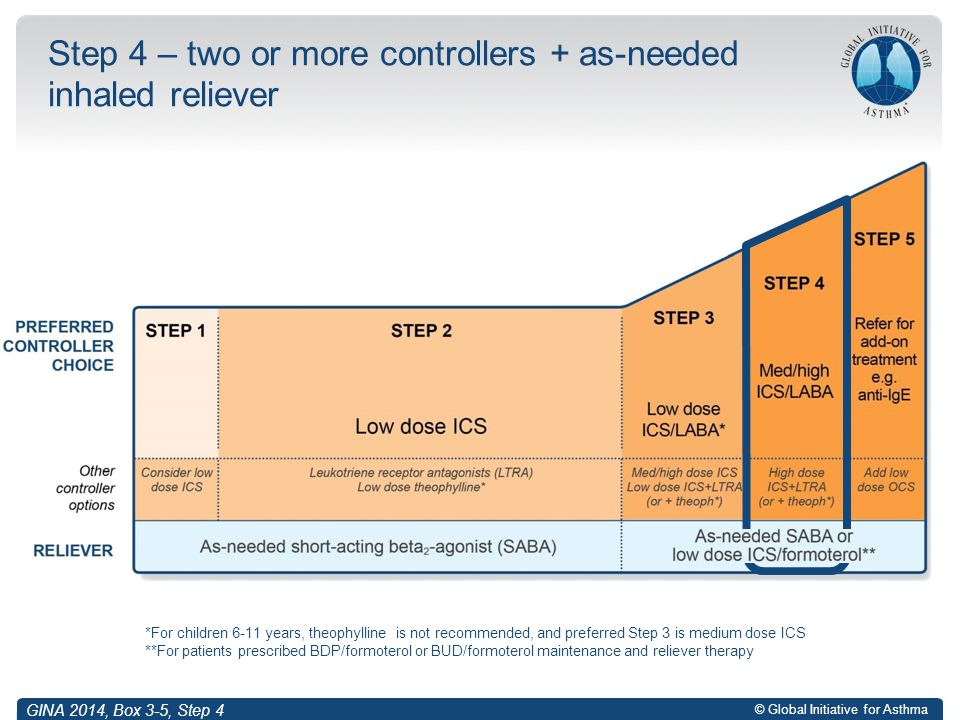 © Global Initiative for Asthma Step 4 – two or more controllers + as-needed inhaled reliever *For children 6-11 years, theophylline is not recommended