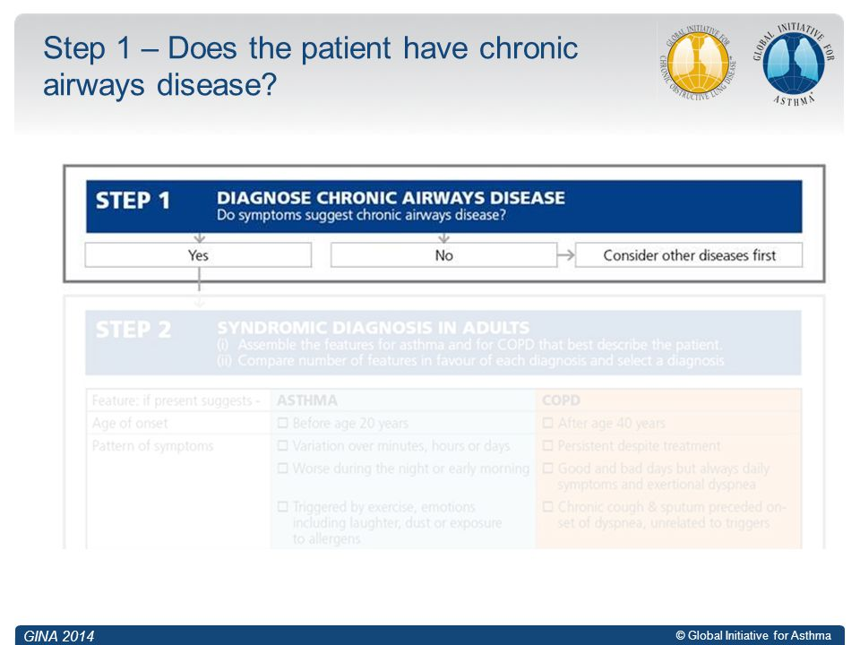 © Global Initiative for Asthma Step 1 – Does the patient have chronic airways disease? GINA 2014