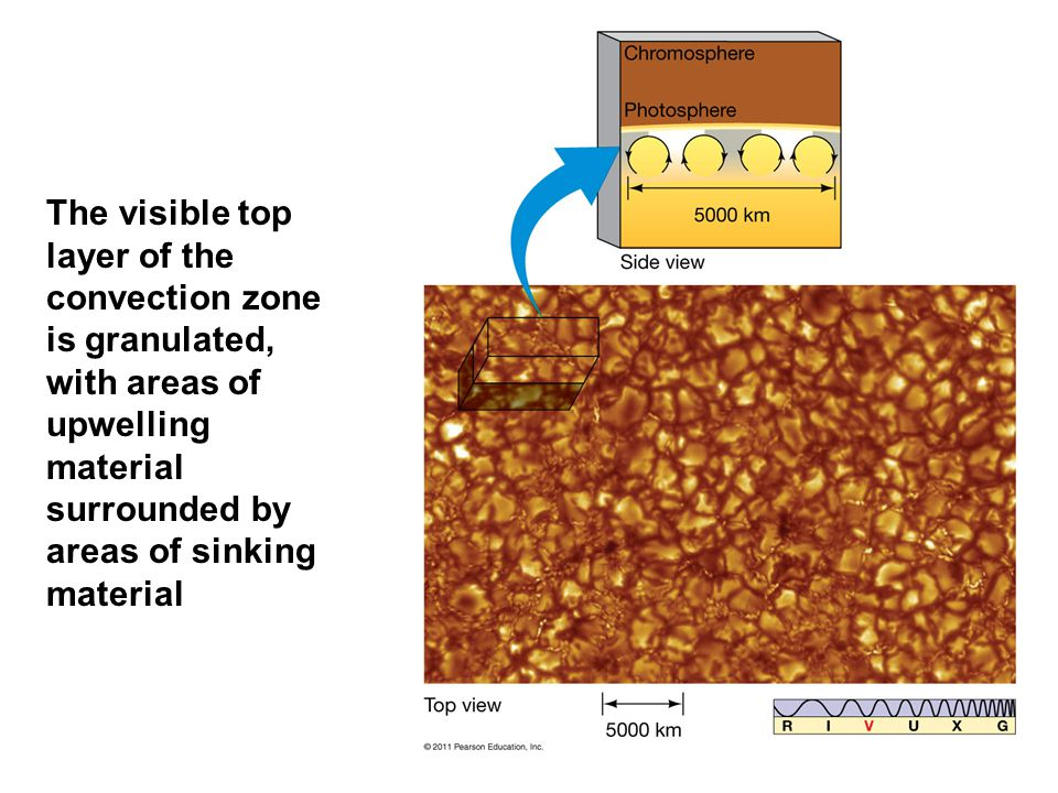 The visible top layer of the convection zone is granulated, with areas of upwelling material surrounded by areas of sinking material