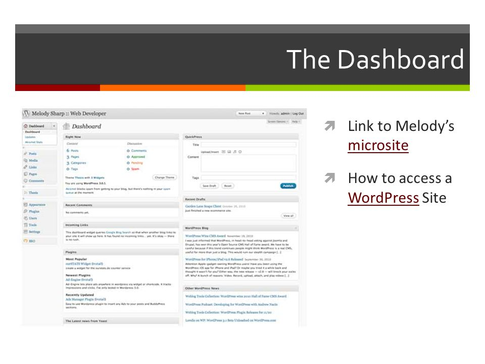 The Dashboard  Link to Melody's microsite microsite  How to access a WordPress Site WordPress