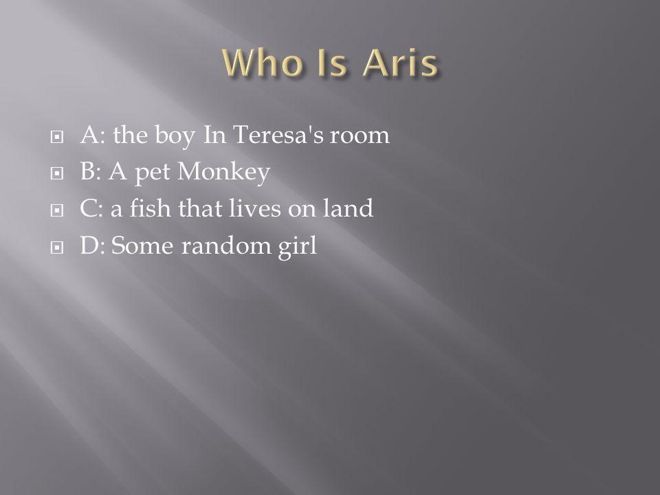  A: the boy In Teresa s room  B: A pet Monkey  C: a fish that lives on land  D: Some random girl