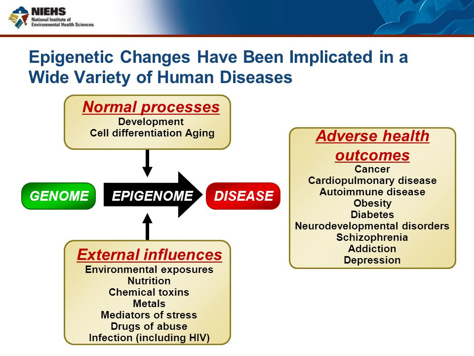 DISEASE EPIGENOME Adverse health outcomes Cancer Cardiopulmonary disease Autoimmune disease Obesity Diabetes Neurodevelopmental disorders Schizophreni