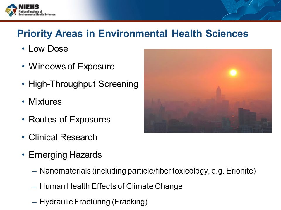 Priority Areas in Environmental Health Sciences Low Dose Windows of Exposure High-Throughput Screening Mixtures Routes of Exposures Clinical Research
