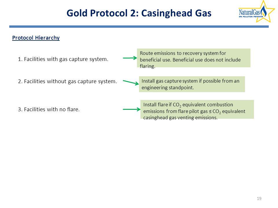 Gold Protocol 2: Casinghead Gas Protocol Hierarchy 19 1.