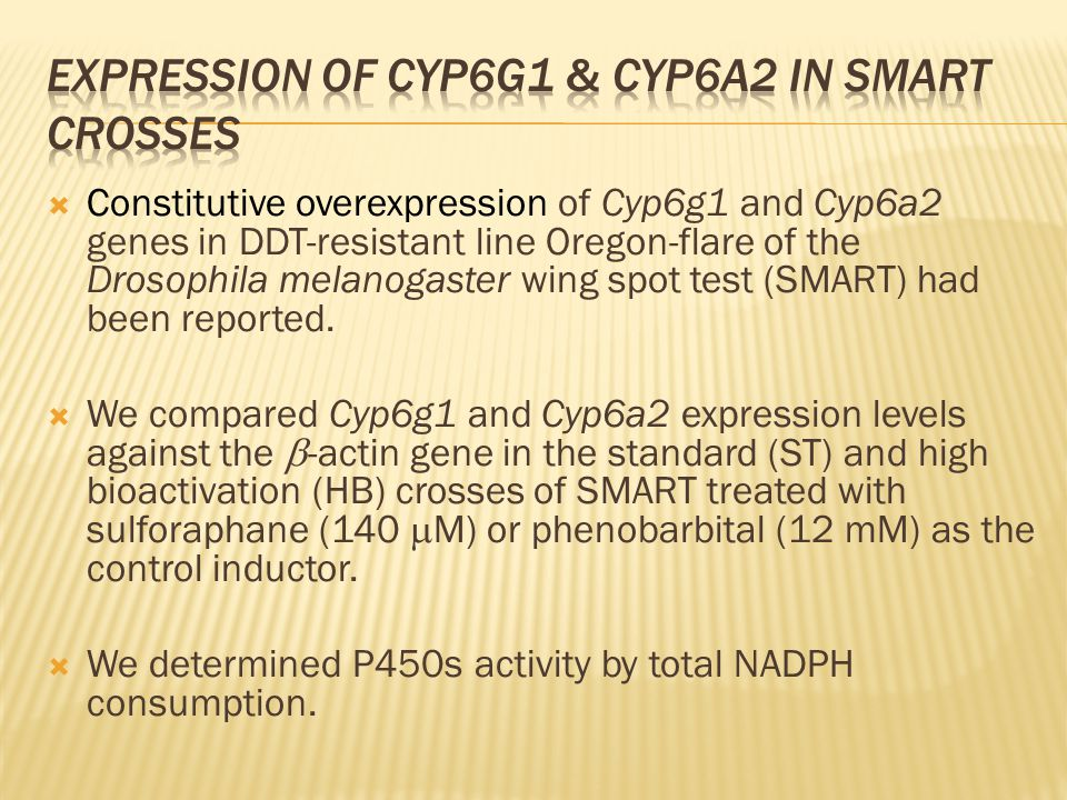  Constitutive overexpression of Cyp6g1 and Cyp6a2 genes in DDT-resistant line Oregon-flare of the Drosophila melanogaster wing spot test (SMART) had been reported.
