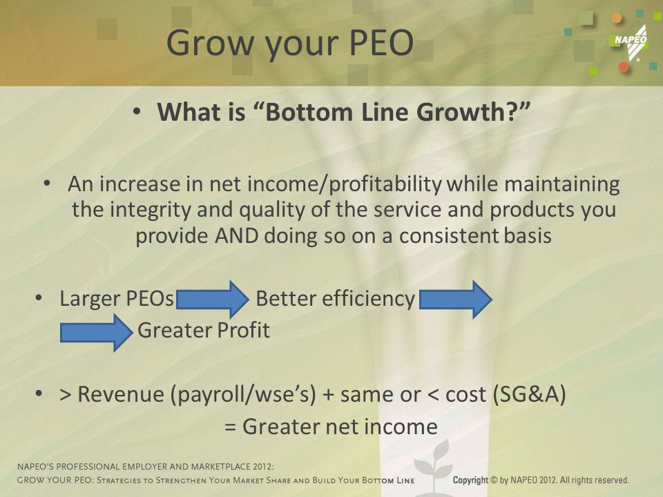 Grow your PEO What is Bottom Line Growth? An increase in net income/profitability while maintaining the integrity and quality of the service and products you provide AND doing so on a consistent basis Larger PEOs Better efficiency Greater Profit > Revenue (payroll/wse's) + same or < cost (SG&A) = Greater net income