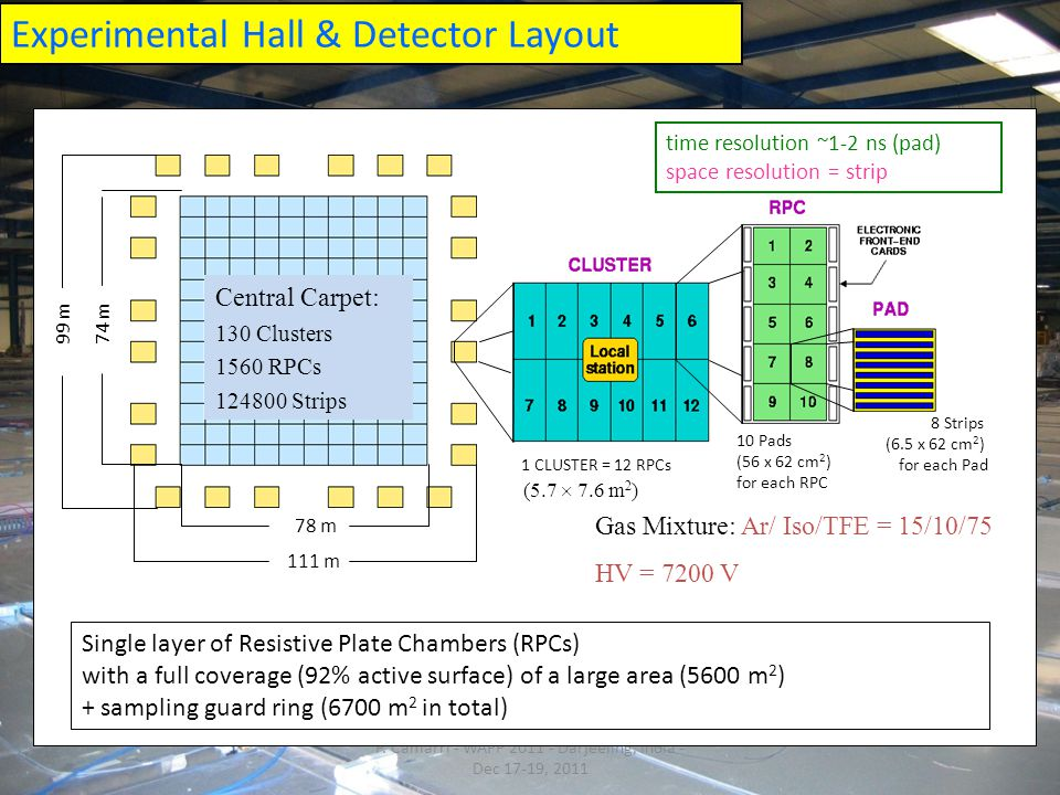 Experimental Hall & Detector Layout RPC P.