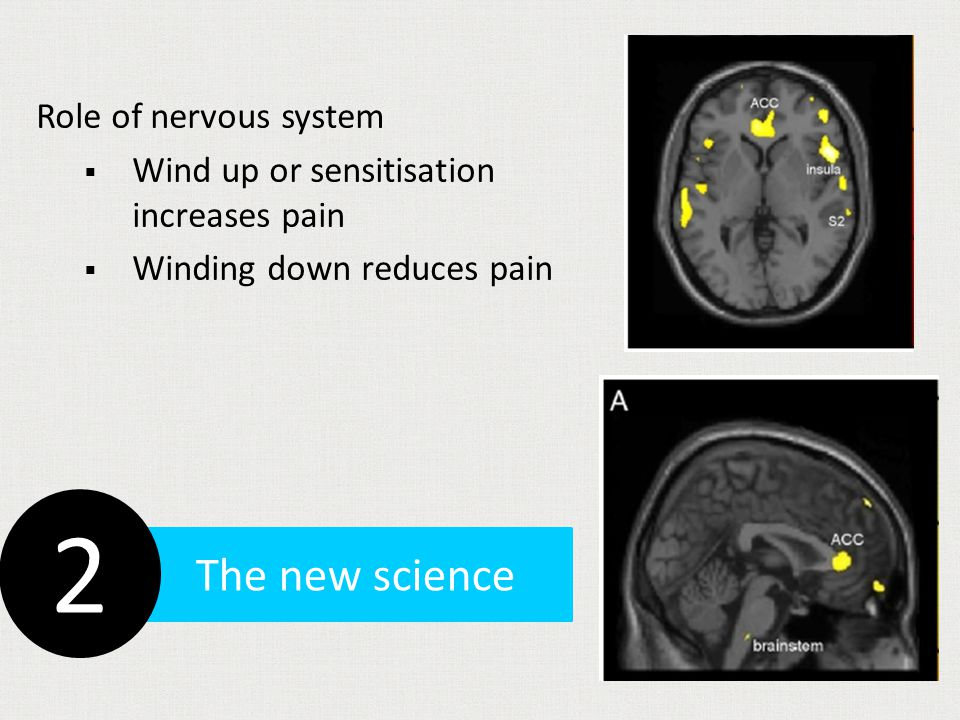Structural changes and pain Treat the person not the scan