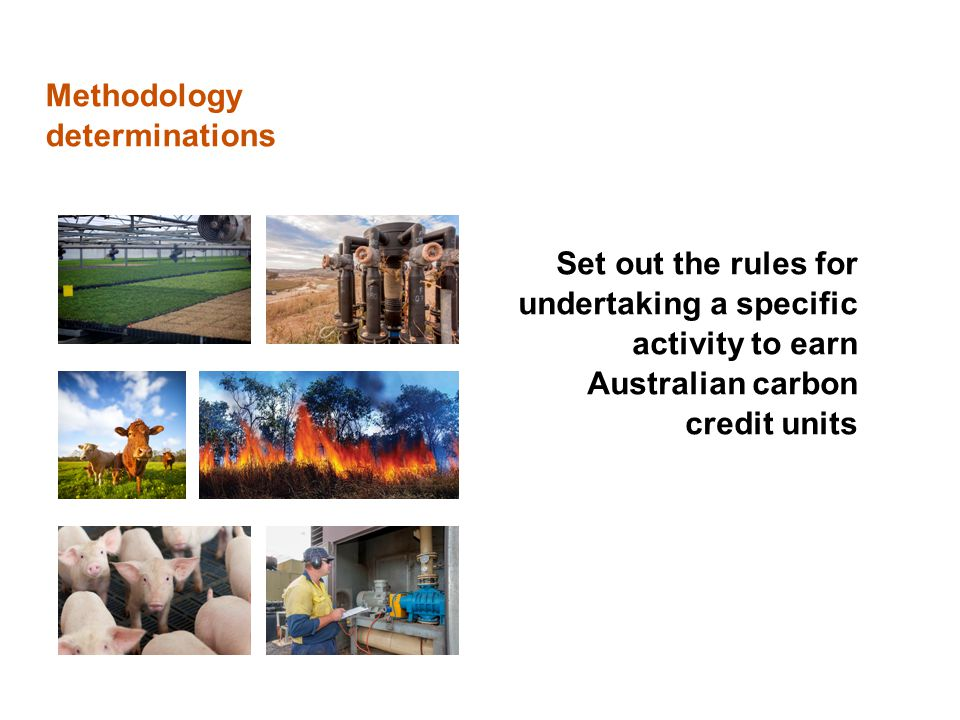 Methodology determinations Set out the rules for undertaking a specific activity to earn Australian carbon credit units