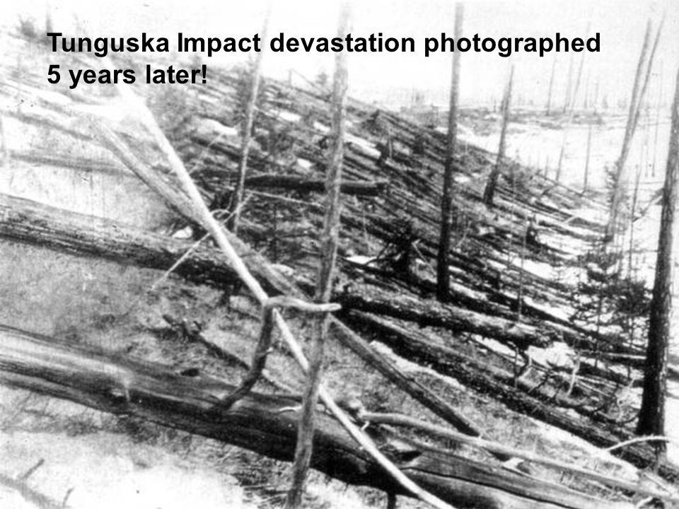 Tunguska Impact devastation photographed 5 years later!