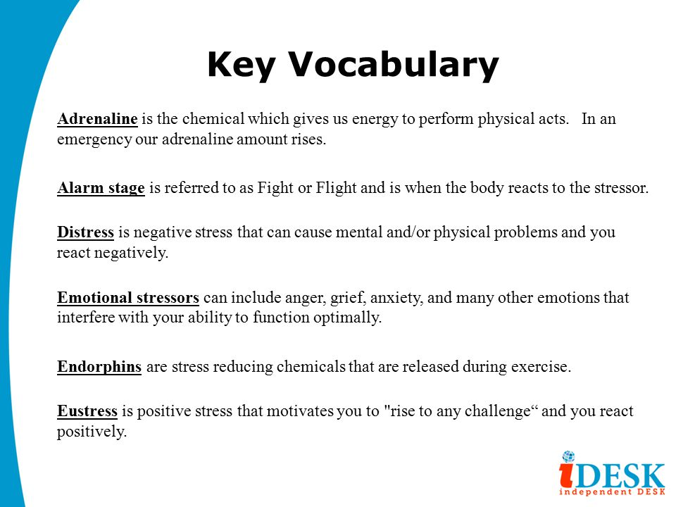 Key Vocabulary Adrenaline is the chemical which gives us energy to perform physical acts.
