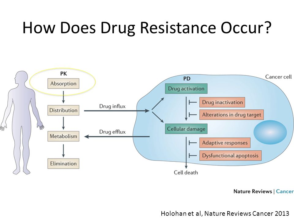 How Does Drug Resistance Occur Holohan et al, Nature Reviews Cancer 2013