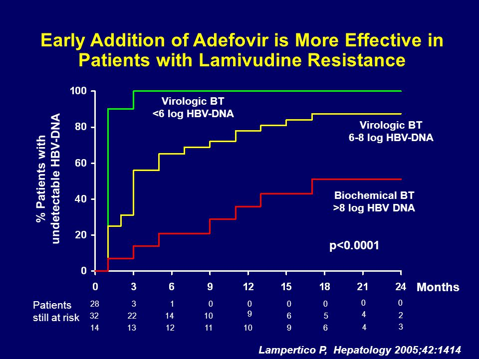 Early Addition of Adefovir is More Effective in Patients with Lamivudine Resistance Lampertico P, Hepatology 2005;42:1414 Months % Patients with undetectable HBV-DNA Virologic BT <6 log HBV-DNA Virologic BT 6-8 log HBV-DNA Biochemical BT >8 log HBV DNA p<0.0001 Patients still at risk 2831 322214106 13 12 11 914 0 0 0 5 6 10 0 9 4 4 0 2 3 0