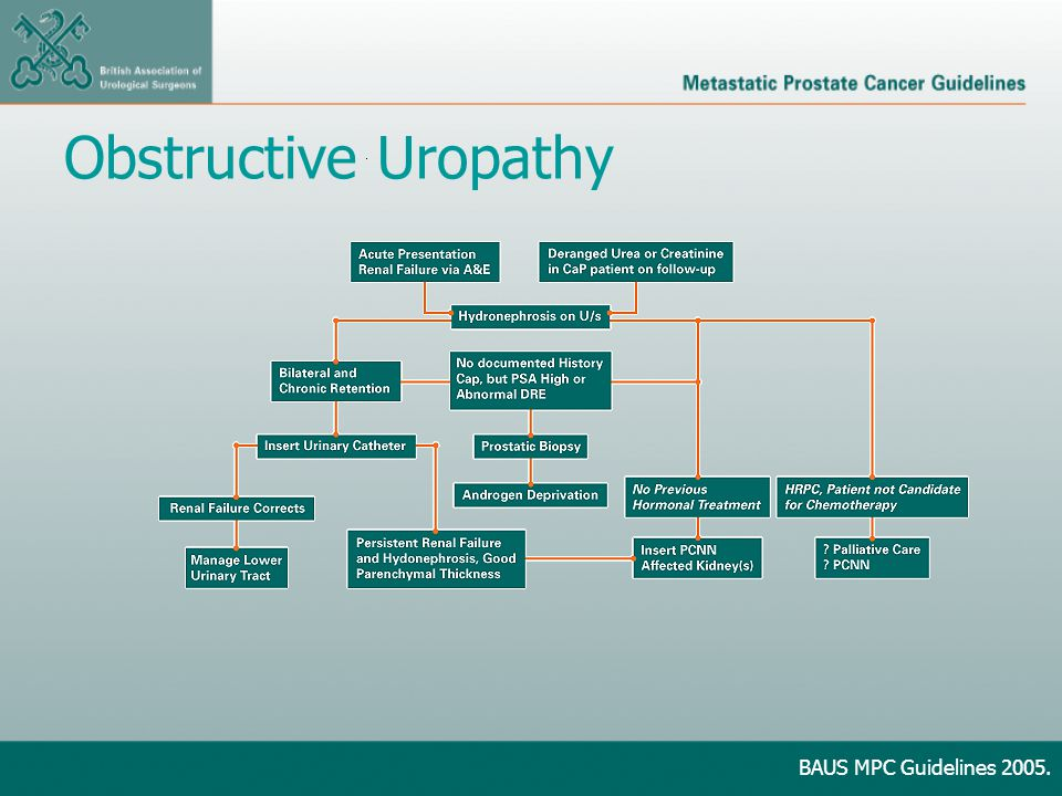 Obstructive Uropathy BAUS MPC Guidelines 2005.