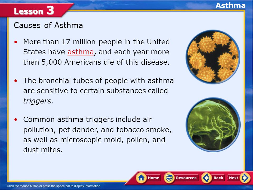 Lesson 3 More than 17 million people in the United States have asthma, and each year more than 5,000 Americans die of this disease.asthma The bronchial tubes of people with asthma are sensitive to certain substances called triggers.