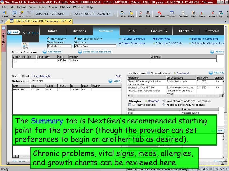 The Summary tab is NextGen's recommended starting point for the provider (though the provider can set preferences to begin on another tab as desired).