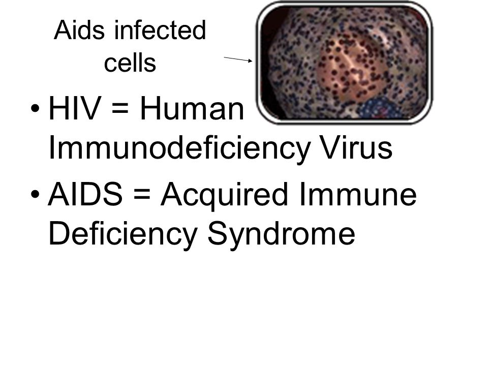 Aids infected cells HIV = Human Immunodeficiency Virus AIDS = Acquired Immune Deficiency Syndrome
