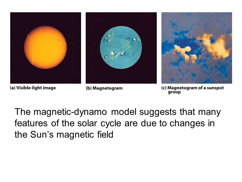 The magnetic-dynamo model suggests that many features of the solar cycle are due to changes in the Sun's magnetic field