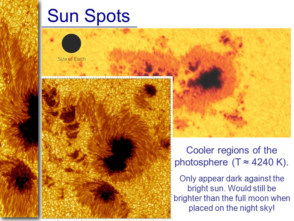 Sun Spots Cooler regions of the photosphere (T ≈ 4240 K). Only appear dark against the bright sun. Would still be brighter than the full moon when pla