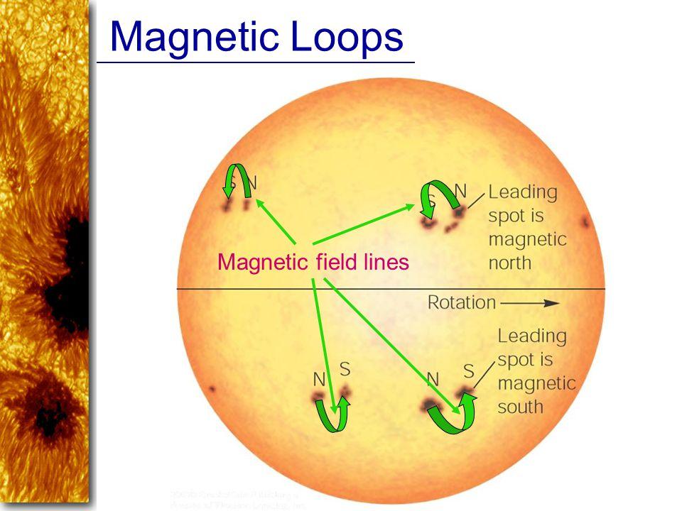 Magnetic Loops Magnetic field lines