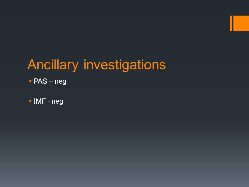 Ancillary investigations  PAS – neg  IMF - neg