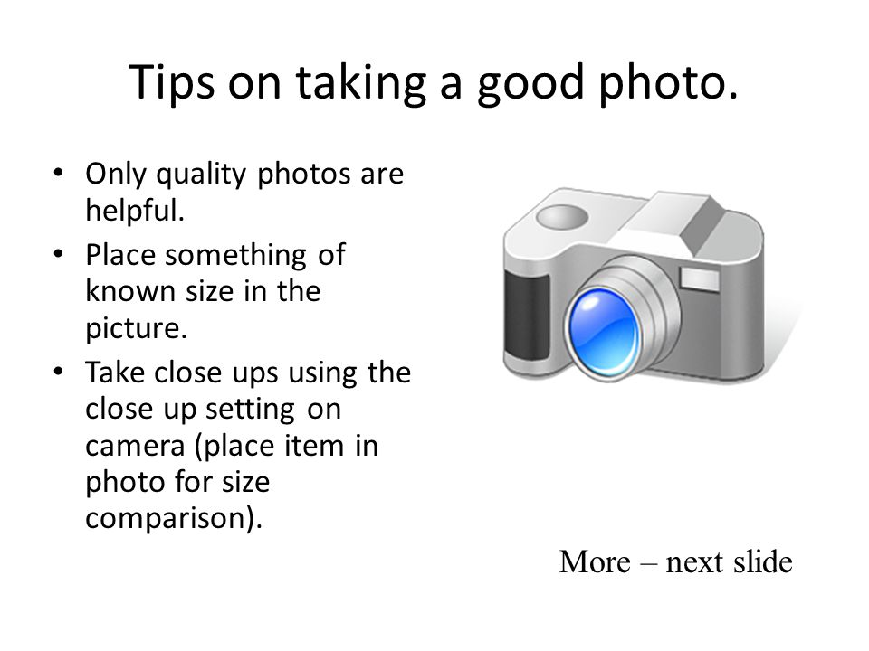 Tips on taking a good photo. Only quality photos are helpful. Place something of known size in the picture. Take close ups using the close up setting
