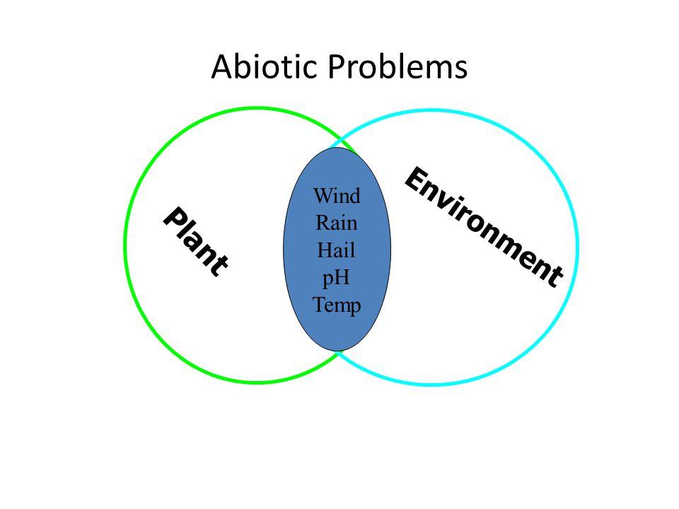 Plant Environment Abiotic Problems Wind Rain Hail pH Temp